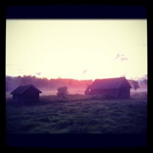 lagård i dimma